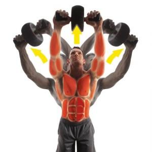 Roata pentru abdomene IRON GYM SPEED ABS  2